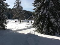 Winter in Val D'Ega