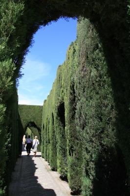 Granada - Giardini fantastici ...